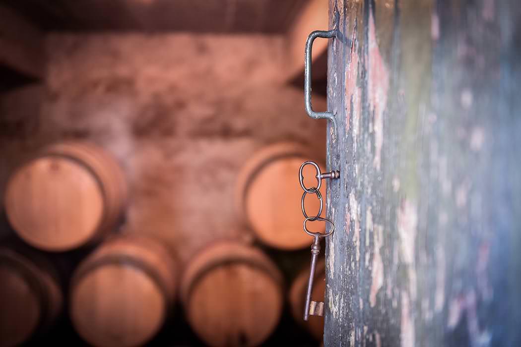 Cave à vins du Mas Sauvy